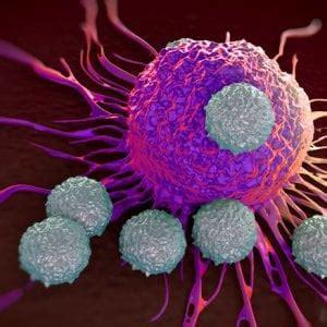 tumore testa tumori testa collo sicuro il mix di immunoterapia e