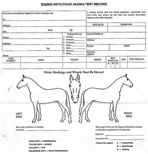 sle of eia report eia strikes 4 tennessee horses prompting euthanasia or