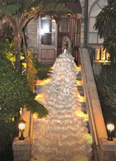 longest wedding dress train     white christmas tree wtf funny faxo