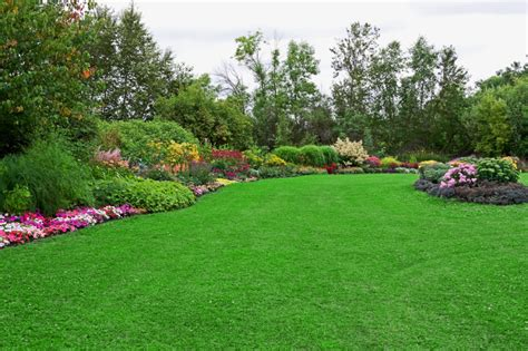 pictures of a garden lawn maintenance landscaping services services