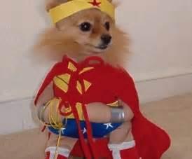 woman pet costume