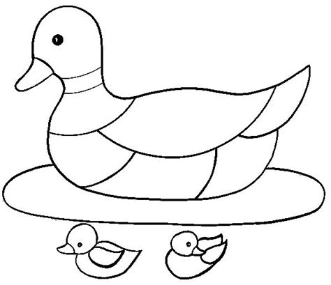 Duck Coloring Pages Duck Coloring Pages Coloringpages1001 Com by Duck Coloring Pages