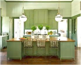 Green Kitchens green kitchen cabinets with black appliances choosing your