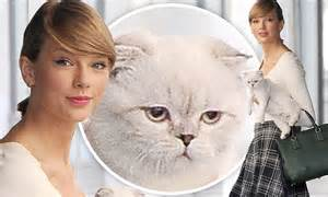 Taylor swift cuts classy figure as she takes pet cat olivia out for