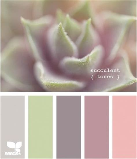 design inspiration color color palettes succulent tones would make for nice
