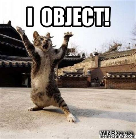 I Get It Meme - lolcat i object