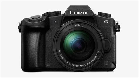 best entry level dslr best entry level dslr cameras for beginners muted