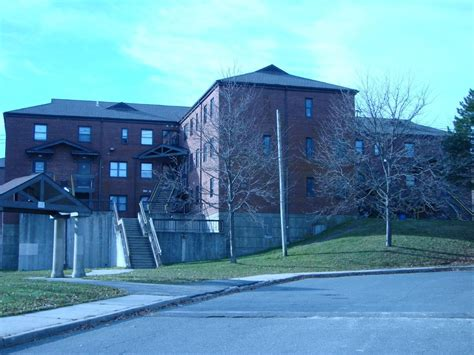berkeley housing authority waterbury housing authority 203 596 2640