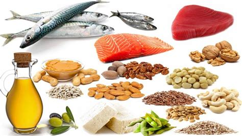 healthy fats rich foods fats rich foods www pixshark images galleries with