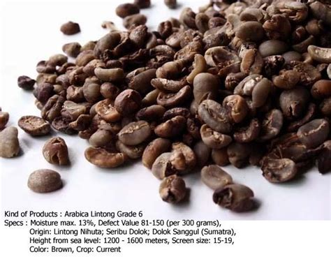 Lintong Coffee Arabica Coffee arabica lintong grade 6 coffee beans products indonesia