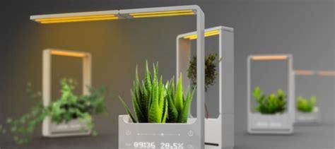 solar light plant grow plants in the babylon light