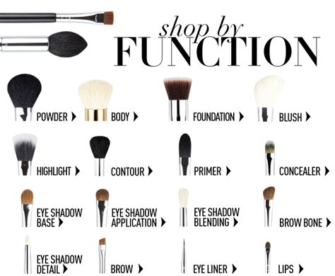 makeup brushes and their functions kbeauty