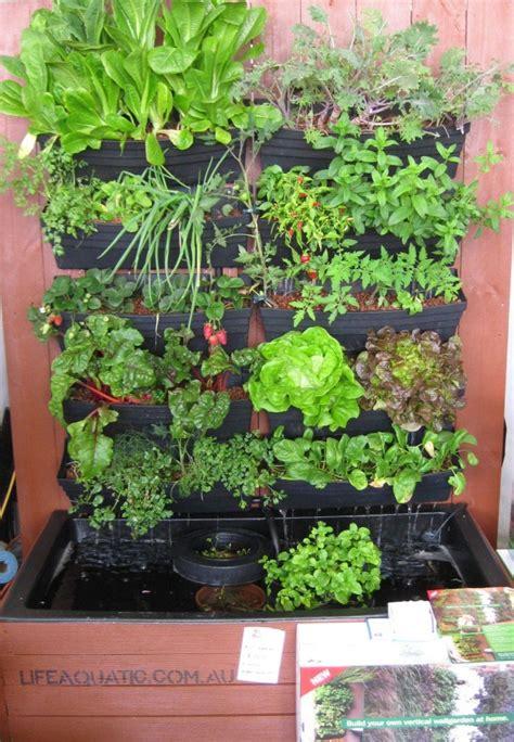 vertical garden aquaponics factors  plants grow