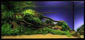 Planted Aquascape Aquarium Aquascaping Ideas Decosee Com
