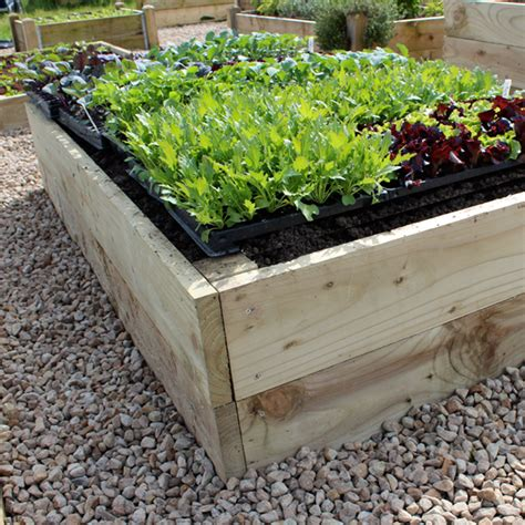 vegetable bed why use raised bed kits for vegetable gardening how to