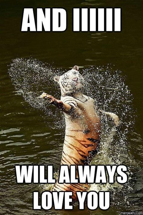 Romantic Meme - 139 best images about relationship memes on pinterest