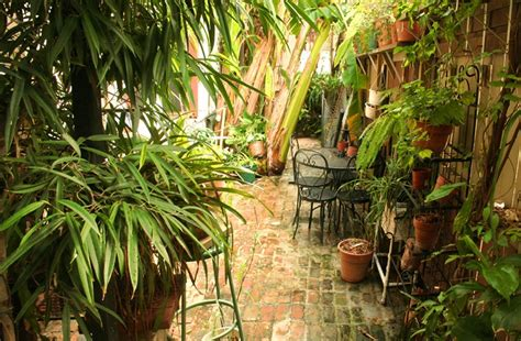 Fancy French Boudoir Bedroom 1870 banana courtyard french quarter in new orleans