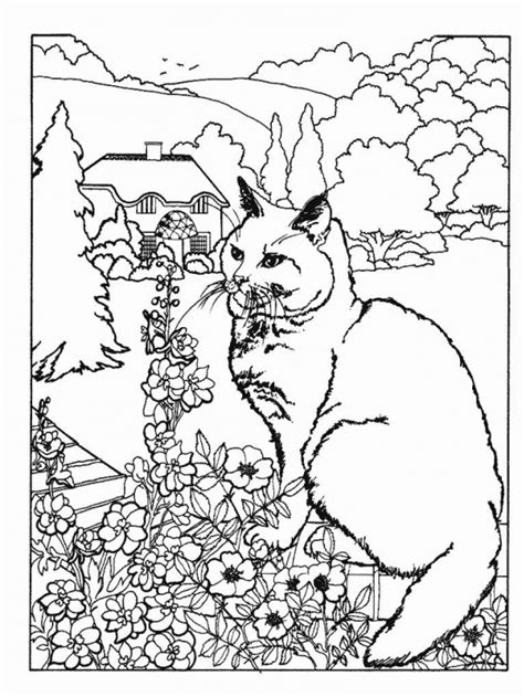 free intricate cat coloring pages