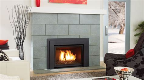fireplaces inserts the housethe house