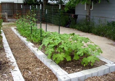 Houston Vegetable Gardening 8 Necessities For Vegetable Gardening Vegetable Garden