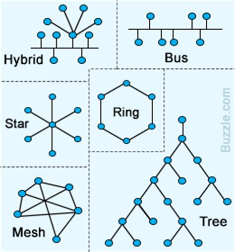 network layout types types of network topologies
