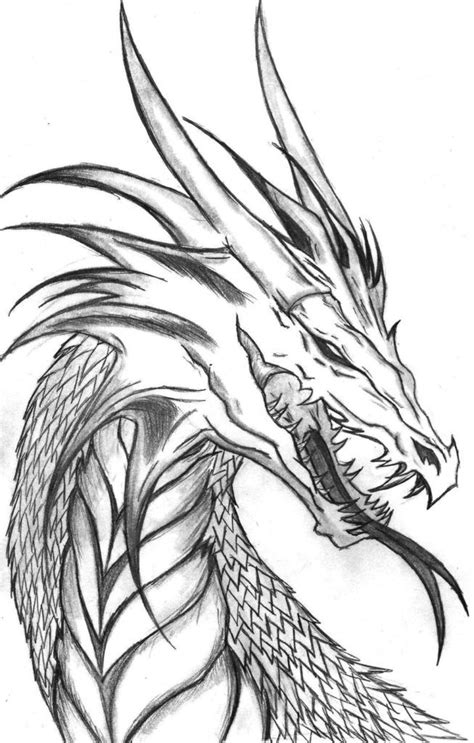 coloring pictures of realistic dragons realistic dragon coloring pages for adults coloring home