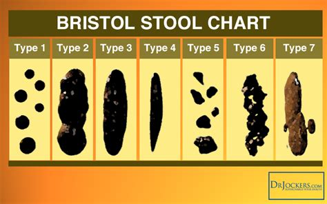 What Is The Normal Colour Of Stool by 16 Ways To Achieve A Healthy