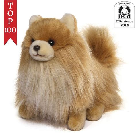 buddy pomeranian 17 best images about itty bitty boo the world s cutest on cutest dogs