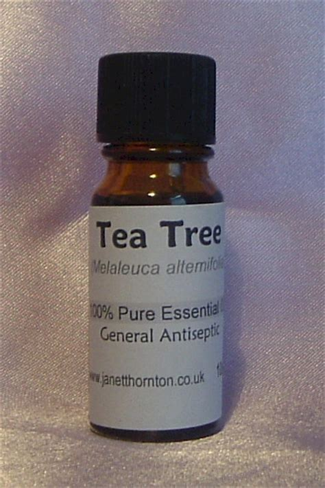 Melaleuca Alternafolia Tea Tree 15 Ml 1 tea tree essential melaleuca alternifolia 10ml