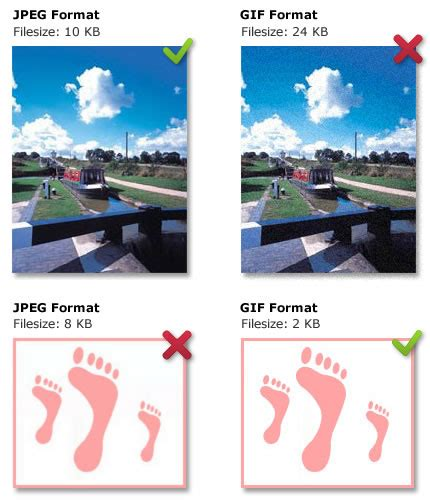 file format for a video image file types on the web university of leicester