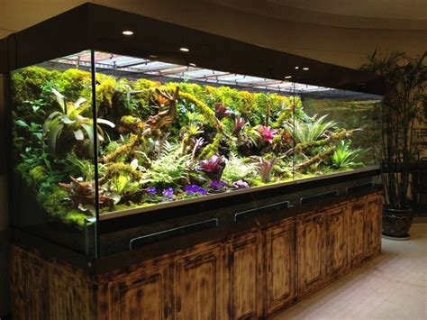 Lu Aquascape Diy 1000 images about terrarium paludarium on