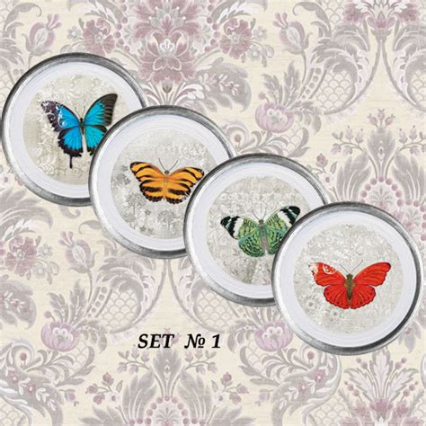 Butterfly Kitchen Decor by Butterfly Decor Butterfly Kitchen Butterfly Nursery