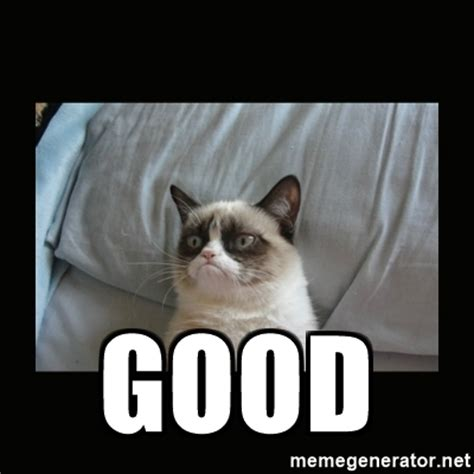 Good Cat Meme - good grumpy cat says good meme generator