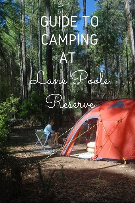 ultimate guide  camping  lane poole reserve