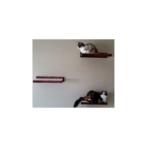 cat furniture climbing wall shelves