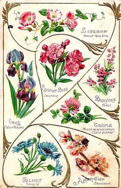 what is the meaning of decoupage 17 best images about vintage flowers on