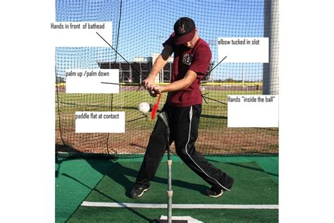 proper way to swing a baseball bat the insider bat baseball swing training bat