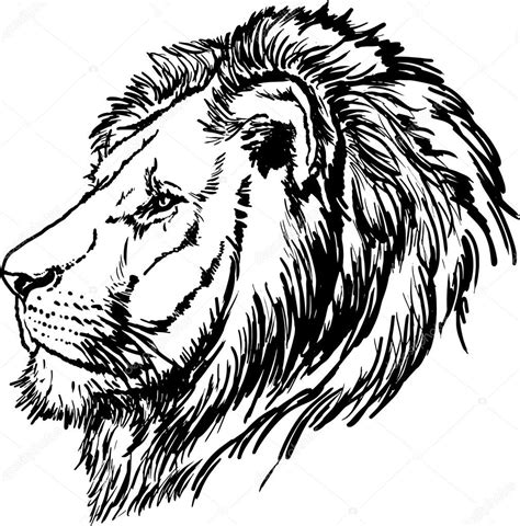 imagenes de leones blanco y negro dibujo de cabeza de leon blanco y negro vector de stock