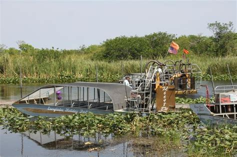 everglades boat rides fort lauderdale airboat ride picture of everglades holiday park fort