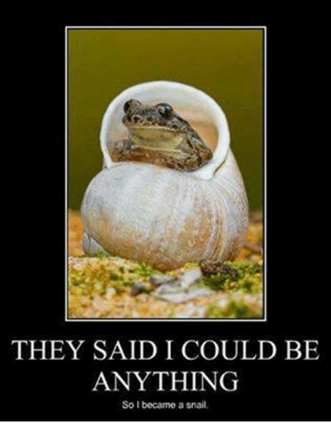 Memes What Are They - they said i could be anything so i became a snail meme