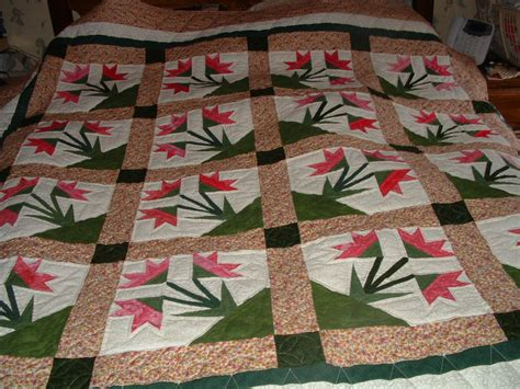 Quilt Carolina by Carolina Paper Pieced Quilt Done