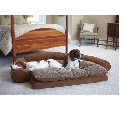 best sofa for pets sofa for furniture pet sofa thesofa