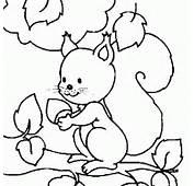 Para Colorear Animales Disney Dibujos Bambi Ardilla 1