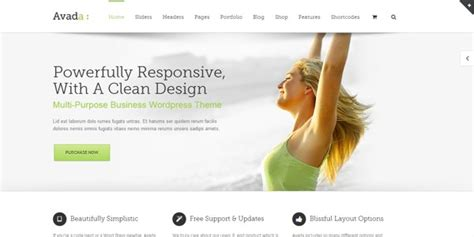 avada theme requirements 21 excellent responsive wordpress themes for 2014
