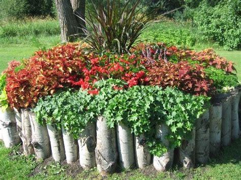 Idee Per Bordure Giardino by Bordure E Recinzioni Fai Da Te Per Giardini