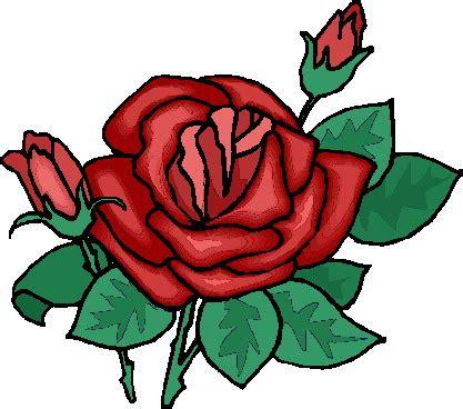 imagenes rosas animadas imagenes animadas de rosas rosas imagui