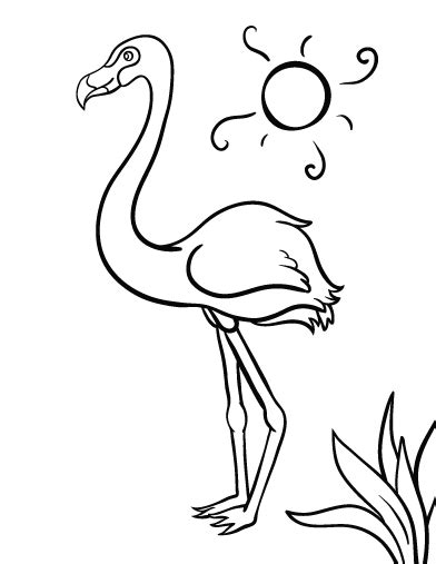 printable flamingo coloring page free pdf download at