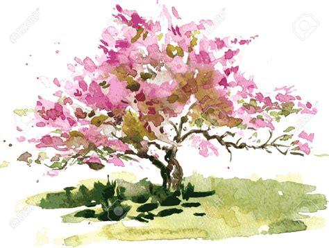 disegno fiore di ciliegio fiore di ciliegio disegno albero da acquerello acquerello