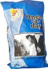 feed once a day calf rearing systems feed or once a day or automatic milk machine feeding