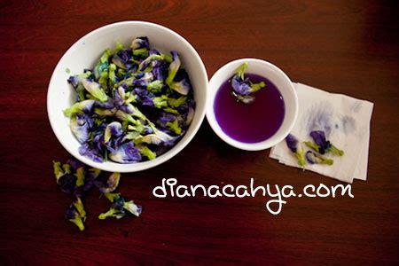 membuat warna coklat alami pewarna makanan alami dianacahya com